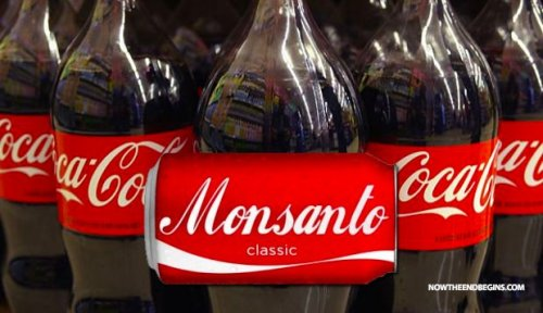 coca-cola-paid-million-dollars-keep-hidden-gmo-labeling-monsanto